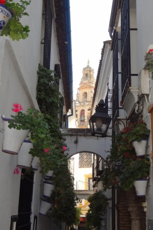 Cordoba- Flores