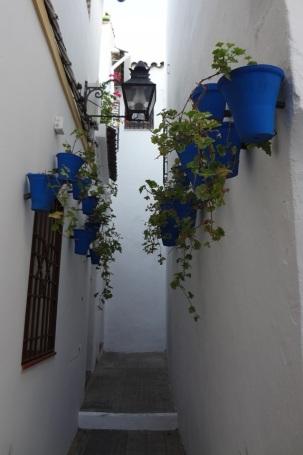 Cordoba- Flower Pots 1