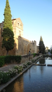 Cordoba- Wall 3