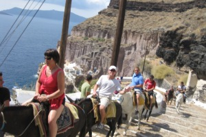 Greece- Santorini- Donkeys 3