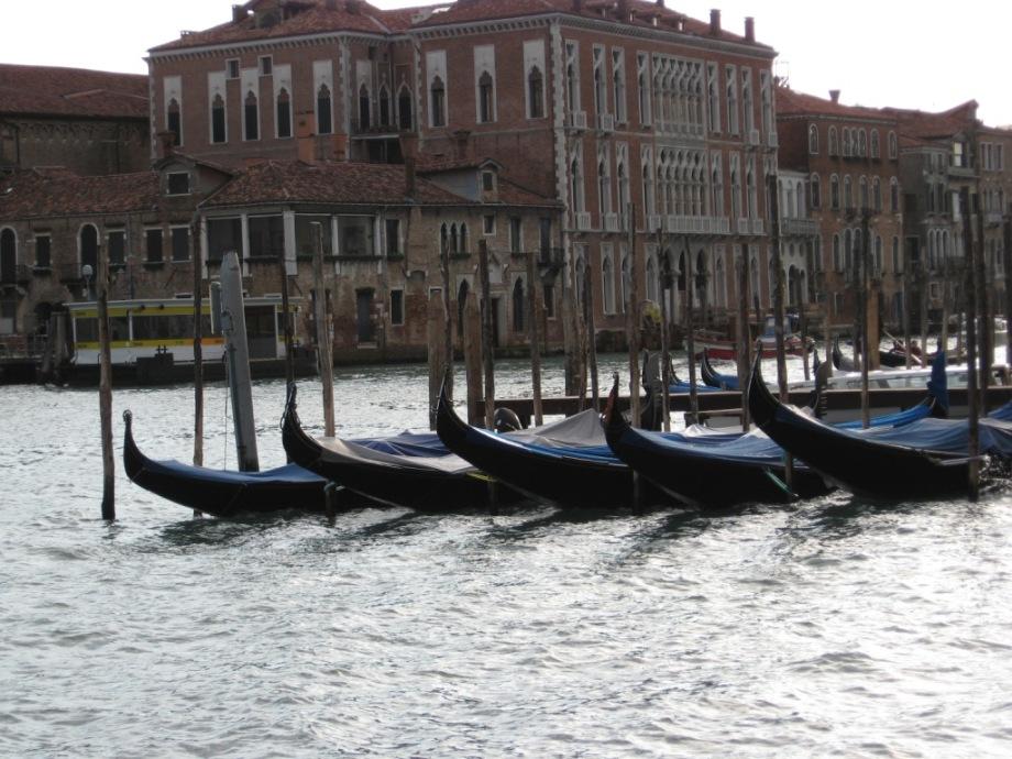 Italy- Venice- Row of Gondolas 1