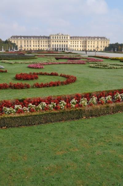 Austria- Vienna- Schonbrunn Palace Flowers 1