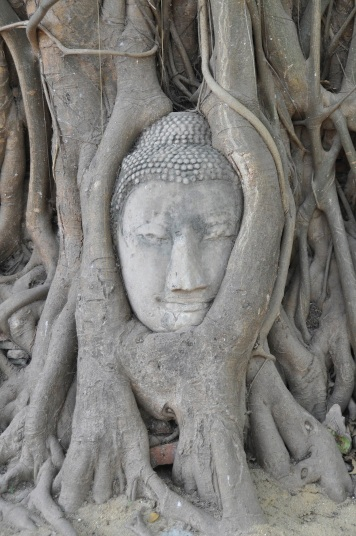 Thailand- Ayutthaya- Buddha Head in Tree 1