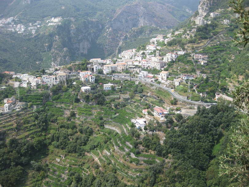 Italy- Ravello- Terraced Hillside 1