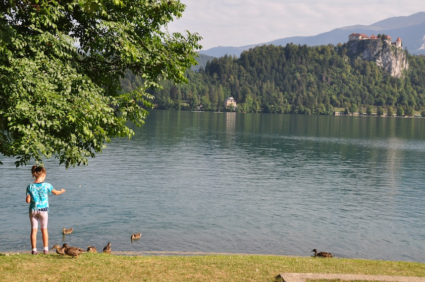 Slovenia- Lake Bled- Little Girl Feeding Birds 1