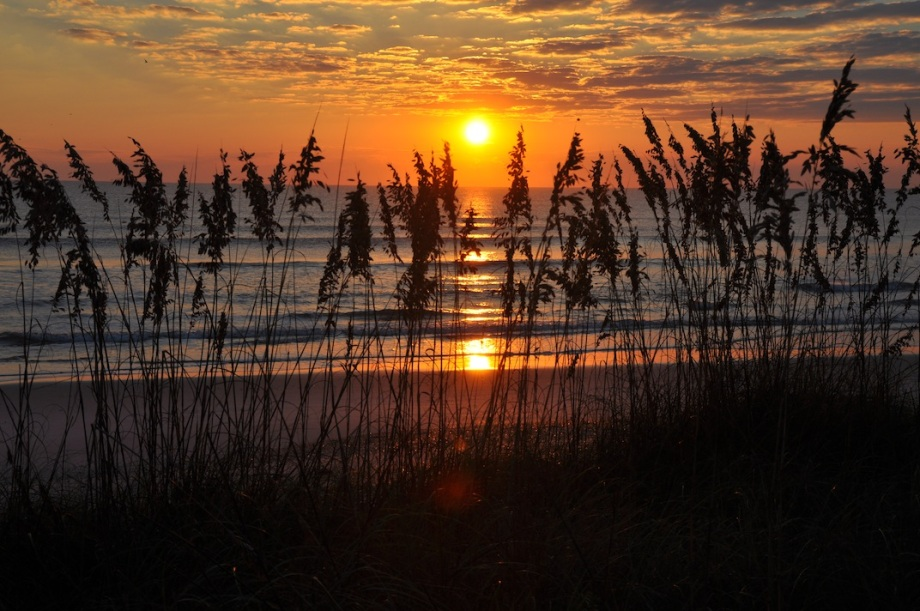 Florida- Ponte Vedra Beach- Sunrise Reeds 1