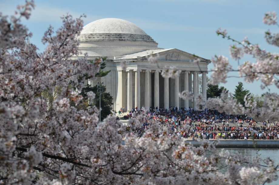 Washington, DC - Cherry Blossom Festival 1